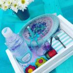 lanchinho picnic