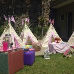 picnic_52